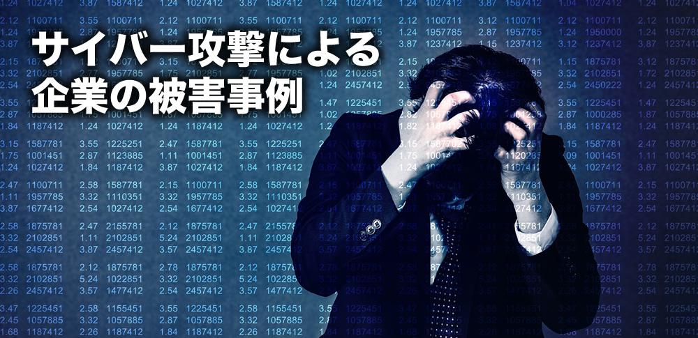 サイバー攻撃による被害事例(2013年版)